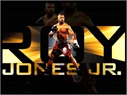 Boks, Roy Jones Jr.